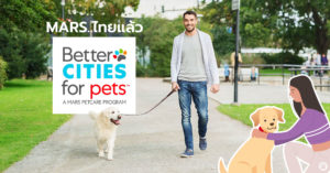 Pet Blog 5